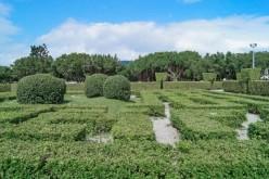 Maze Garden at Xinsheng Park